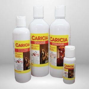 Shampoo-Caricia Lavetec